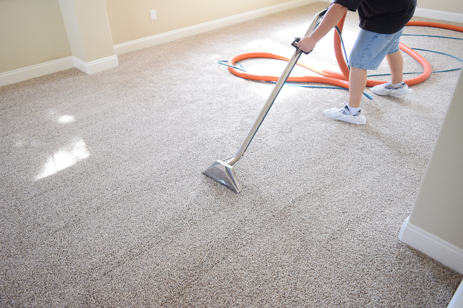 professional carpet cleaning carpet cleaning 28554